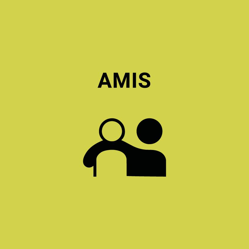 amis-1